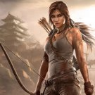 Tomb Raider 2013 Video Game Lara Croft Art 24x18 Print Poster