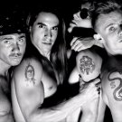 Red Hot Chili Peppers BW RHCP 24x18 Print Poster