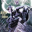 Catwoman DC Comics Heroes Art 24x18 Print Poster