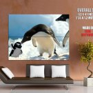 Penguins Toy Snow Antarctica Nature Animals Huge Giant Print Poster