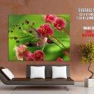 Hummingbird Macro Flowers Bird Nature GIANT 63x47 Print Poster