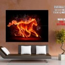Fire Horse Flames Cool Art Style Huge Giant Print Poster