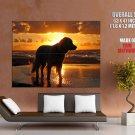 Seashore Sunset Water Overcast Dogs Huge Giant Print Poster