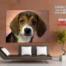 Tearful Puppy Small Dog Huge Giant Print Poster