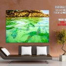 Green Lake Small Fishes Nature Huge Giant Print Poster