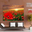 Poppy Flowers Sunset Sky Nature Huge Giant Print Poster