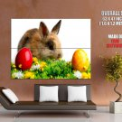 Easter Eggs Cute Small Rabbit Holiday Huge Giant Print Poster