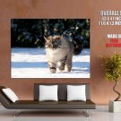 Fat Cat Snow Winter Animal Huge Giant Print Poster