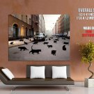 Cat S World Animal Volvo Cool Huge Giant Print Poster