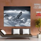 Flying Eagle Snow Mountains Animal HUGE GIANT Print Poster