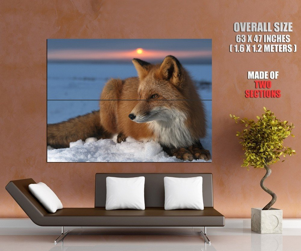 Fair Fox Sunset Snow Animal Huge Giant Print Poster