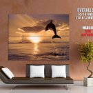 Dolphin Jump Sunset Animal Huge Giant Print Poster