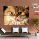 Funny Cat Tongue Animal Huge Giant Print Poster