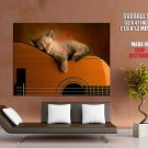 Cute Sleeping Kitten Funny Cat Animal HUGE GIANT Print Poster