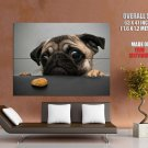 Funny Cute Dog Pug Puppy Huge Giant Print Poster