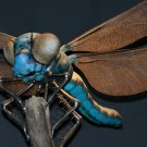 Dragonfly Macro Beautiful Insect Animal Huge 47x35 Print Poster