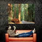 Road Forest Trees Timber Nature Huge 47x35 Print POSTER