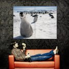Curious Penguin Snow Ice Animal Huge 47x35 Print Poster