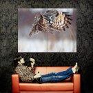 Hunting Hovering Owl Animal Huge 47x35 Print Poster