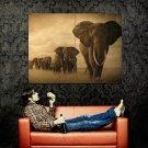 Elephants Animal Nature Photo Art Huge 47x35 Print Poster