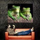 Frogs Macro Animals National Geographic Huge 47x35 Print Poster