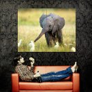 Cute Elephant Kid National Geographic Huge 47x35 Print Poster