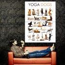 Yoga Dogs Funny Cool Animal Huge 47x35 Print Poster