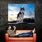 Polar Glacier Landscape Nature Huge 47x35 Print Poster