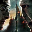 Harry Potter And The Deathly Hallows Part 2 32x24 Print POSTER