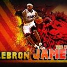 Lebron James The KIng Miami Heat NBA Basketball 32x24 POSTER