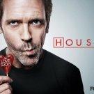 Love Sucks Lollipop House M D Hugh Laurie Tv Series 32x24 Poster