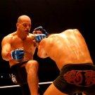Roy Boughton MMA Mixed Martial Arts 32x24 Print POSTER