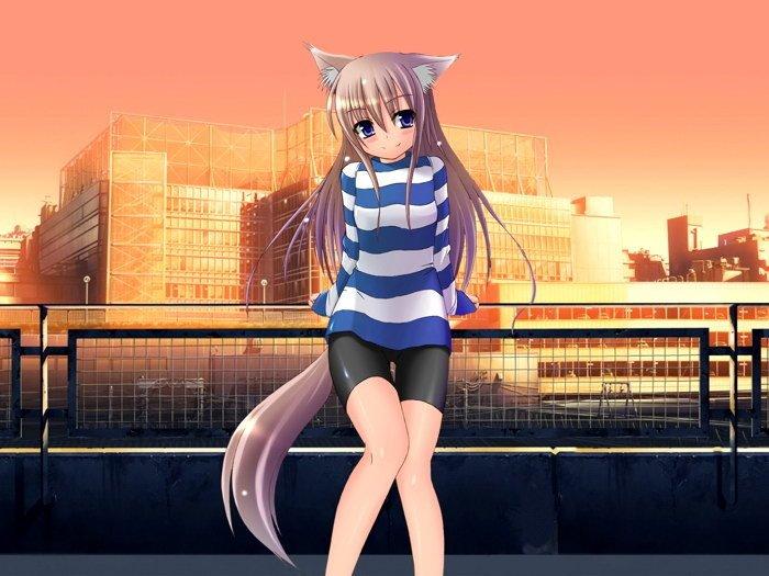 Sexy Anime Girl Animal Ears Tail 32x24 Print POSTER