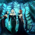 Three Hot Witches Forest Night Fantasy 32x24 Print POSTER