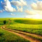 Green Hill Long Way Sun Landscape 32x24 Print POSTER