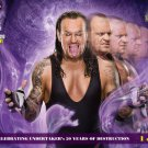 Undertaker 20 Years Wrestling WWE 32x24 Print Poster