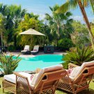 Resort Swimming Pool Palms 32x24 Print Poster