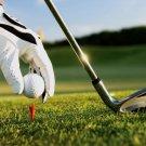 Golf Club Ball Sport 32x24 Print Poster
