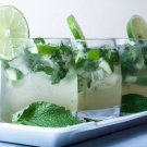 Mojito Mint Leaves Lime Ice Drink Food 32x24 Print Poster