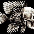 Skull Fish Bone Creative Art 32x24 Print Poster