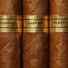 Havana Cigars Smoking 32x24 Print Poster