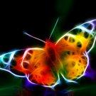 Fractal Butterfly Light Art 32x24 Print Poster