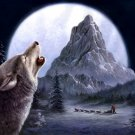 Wolf Moon Night Snow Nature Mountain Art 32x24 Print Poster