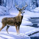 Deer Nature Winter Snow Painting Art 32x24 Print Poster