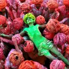 India People Colors National Geographic 32x24 Print Poster