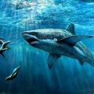 Great White Shark Nature Animal 32x24 Print Poster