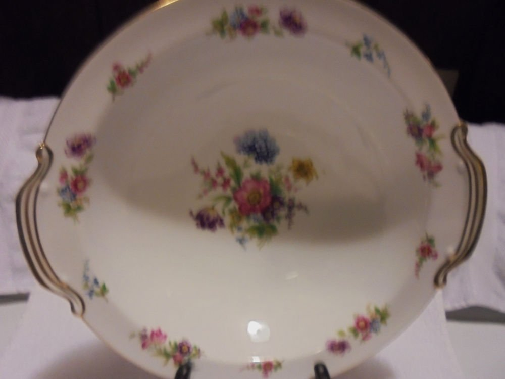 "NORITAKE FINE CHINA DRESGAY #3038-APPROX  10 1/2"" BOWL...JAPAN.."