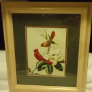 BEAUTIFUL FRAMED & MATTED RED BIRD/MAGNOLIA BY JAMES GORDON IRWING...BEIGE FRAME