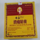 Cheezheng Pain Relieving Plaster 5 Plasters(90 mm x 120 mm Each)