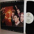 '81 TAZMANIAN DEVILS Promo LP Broadway Hi-Life